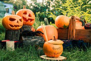 blok-halloween